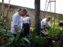 Mobilização de Combate ao Aedes aegypti - Superintendências Estaduais
